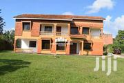 HOUSE FOR RENT IN BUNGA | Houses & Apartments For Rent for sale in Central Region, Kampala