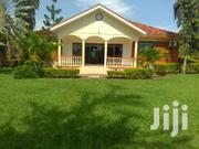 Very Big 5 Bedrooms Home On Half Acre For Rent Heart Of Lubowa Quality | Houses & Apartments For Rent for sale in Central Region, Kampala