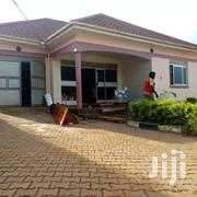 Namugongo Big Compound House On Sale | Houses & Apartments For Sale for sale in Central Region, Kampala