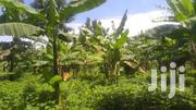 52decimals/Half Acre In Namugongo Bukerere At 40M Negotiable | Land & Plots For Sale for sale in Central Region, Kampala