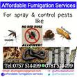 Fumigation Services And Pest Control | Automotive Services for sale in Kampala, Central Region, Uganda