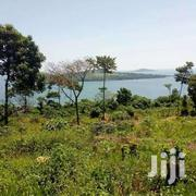 Land 50 Acres For Sale At 6m | Houses & Apartments For Sale for sale in Central Region, Kampala