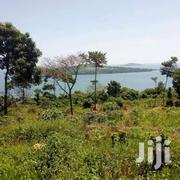 Land 50 Acres Nangunga Nkokonjeru MUKONO Road | Land & Plots For Sale for sale in Central Region, Kampala