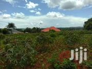 Acre Forced Sale Namayuba After Kakiri Just 2kms Off Main Road Title | Land & Plots For Sale for sale in Central Region, Kampala