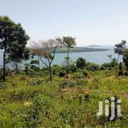 50 Acres For Sale In Nkokonjeru Each At6m | Land & Plots For Sale for sale in Western Region, Kisoro