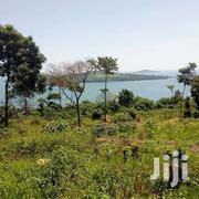 Nice 50 Acres For Sale In Nanguga At 6m Each | Land & Plots For Sale for sale in Central Region, Mukono