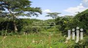 600 Acres of Private Titled Land Touching the Nile in Kamuli | Land & Plots For Sale for sale in Eastern Region, Kamuli