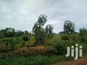 Land For Sale Kira Kimwanyi 50&100 W | Land & Plots For Sale for sale in Central Region, Wakiso