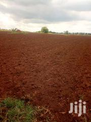150  Acres Of Land In In Kikyusa | Land & Plots For Sale for sale in Central Region, Kampala