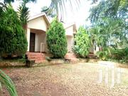 Ntinda-Kyambogo Road Single Bedroom House for Rent | Houses & Apartments For Rent for sale in Central Region, Kampala
