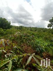 1 Acre At 6.5m   Land & Plots For Sale for sale in Central Region, Mukono