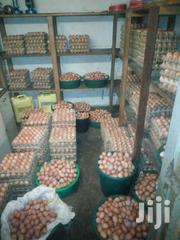 Fertilised  Kuroiler ,Layer Eggs | Other Animals for sale in Central Region, Kampala