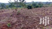 10 Acres In Bombo- Kalule At 10m Each | Land & Plots For Sale for sale in Western Region, Kisoro