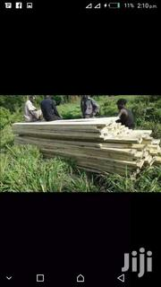 Construction And Furniture Timber | Automotive Services for sale in Western Region, Kisoro