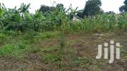 2acres Busula Kalule. After Bombo 30m All | Land & Plots For Sale for sale in Central Region, Luweero