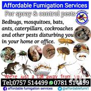 Fumigation And Control Pests | Automotive Services for sale in Central Region, Kampala