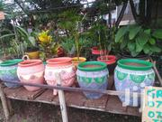Compound Designing, Flowers Pots | Home Accessories for sale in Central Region, Kampala