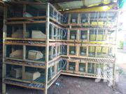 WOODEN RABBIT CAGES | Automotive Services for sale in Central Region, Kampala