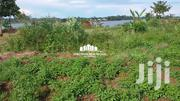 LAND FOR SALE IN NKUMBA | Land & Plots For Sale for sale in Western Region, Kisoro