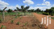 Various Plots on One Piece of Land at Bulubandi, Iganga | Land & Plots For Sale for sale in Eastern Region, Iganga