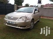 Toyota Allex 2002 Model 1 5 Cc Golden In Colour. | Cars for sale in Central Region, Kampala