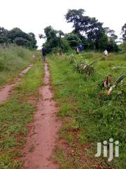 Bujuuko, 1 Acre Of Land With Banana Plantation | Land & Plots For Sale for sale in Central Region, Mpigi