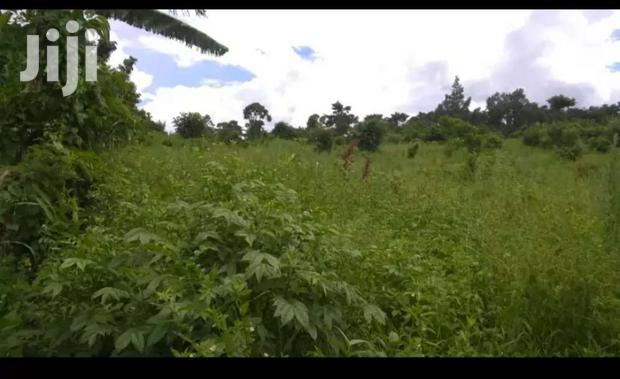 Archive: Land For Sell In Arua.