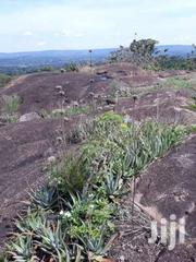 Land 250 Acres W/T 11 Acres Of Granite Stones In Hoima | Land & Plots For Sale for sale in Central Region, Kampala
