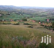 Land for Sale | Land & Plots For Sale for sale in Western Region, Mbarara