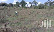 Plot For Sale With Young Kalitunsi | Land & Plots For Sale for sale in Central Region, Mpigi