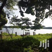 93 Acres on Sale Touching Lake Shore at Entebbe Bugili | Land & Plots For Sale for sale in Central Region, Wakiso