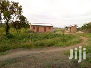 10acres of Land for Sale in Zirobwe | Land & Plots For Sale for sale in Central Region, Luweero
