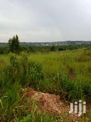 100 Acres Of Land On Quick Sale In Kayunga At 2.5m Per Acre | Land & Plots For Sale for sale in Central Region, Kayunga