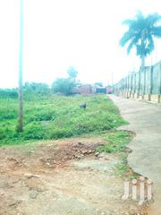 1 Acre and Half Acres of Land in Najjera Near Tarmac at 350M | Land & Plots For Sale for sale in Central Region, Kampala