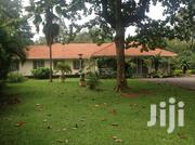 Nice 4 Bedrooms House in Bugolobi | Houses & Apartments For Rent for sale in Central Region, Kampala