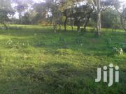 Land 240 Acres In Mukyenda Mubende | Land & Plots For Sale for sale in Central Region, Mubende