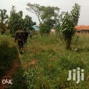 50x100ft Pot Of Land For Sale In Kira At 15m | Land & Plots For Sale for sale in Central Region, Kampala