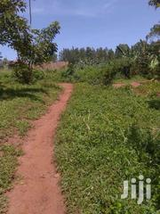 3 Acres in Bukerere at 80m Each | Land & Plots For Sale for sale in Central Region, Mukono