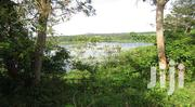 25 ACRE LAND FOR SALE TOUCHING THE NILE JINJA | Land & Plots For Sale for sale in Eastern Region, Jinja