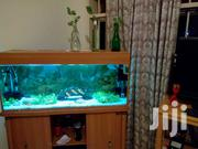 Aquariums | Pet's Accessories for sale in Central Region, Kampala