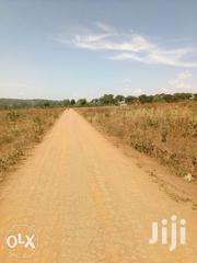 50x100ft Plot Of Land For Sale In Gayaza At 12m | Land & Plots For Sale for sale in Central Region, Kampala