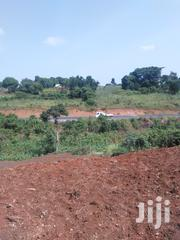 7 Acres Of Land For Sale | Land & Plots For Sale for sale in Western Region, Hoima