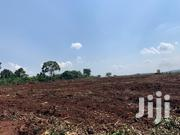 Plots for Sale in Kiwenda | Land & Plots For Sale for sale in Central Region, Wakiso