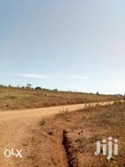 50x100ft Plot Of Land For Sale In Gayaza At 8m | Land & Plots For Sale for sale in Central Region, Kampala
