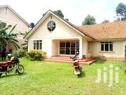 A Four Bedroom Standalone House for Rent in Kireka | Houses & Apartments For Rent for sale in Central Region, Kampala