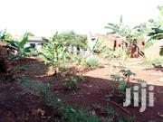 60fts By 120fts Plot On Sale With 5rooms At Mafubira Jinja At UGX40M | Land & Plots For Sale for sale in Eastern Region, Jinja