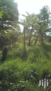 Suitable Land For School Or An Estate | Land & Plots For Sale for sale in Central Region, Luweero