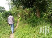 Kawempe Kagoma Chinese Factory Avery Bussy Area Just 200mtrs From   Land & Plots For Sale for sale in Central Region, Kampala
