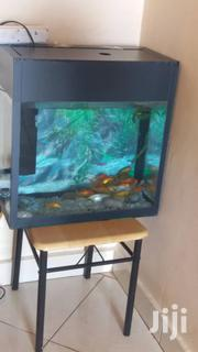 New Good Aquariam For Home And Office | Home Accessories for sale in Central Region, Kampala