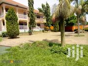 Naguru 7 Bedroom Standalone House for Rent. Rent Price: 4000$ | Houses & Apartments For Rent for sale in Central Region, Kampala